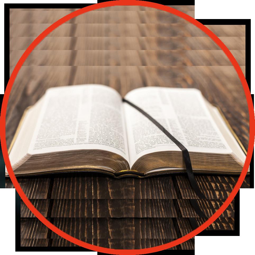 bibleWayOfLife